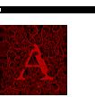 ApothicWine_Logo